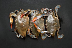 Pan Fried Soft Shell Crab