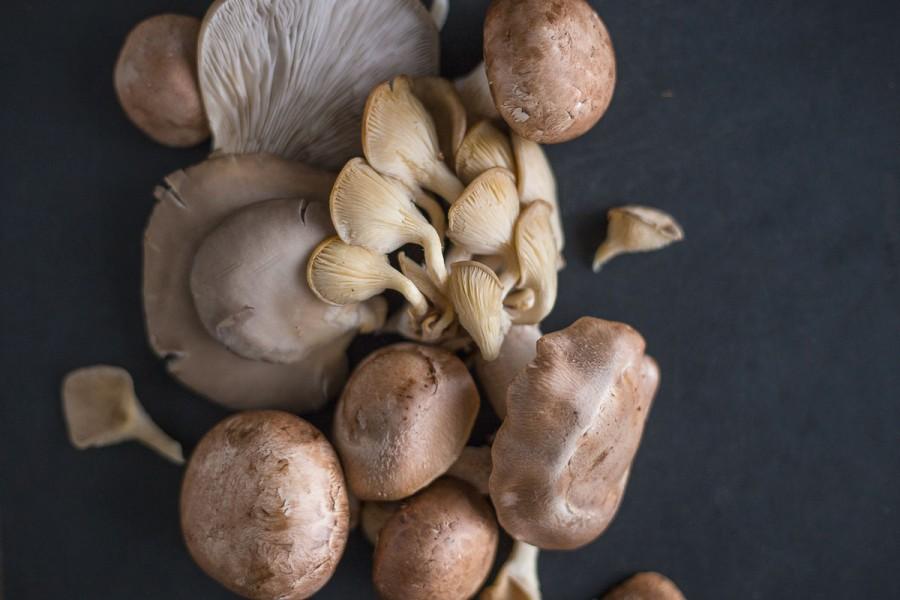 braised mushrooms parmigiano